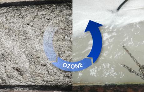greasetap, ozone